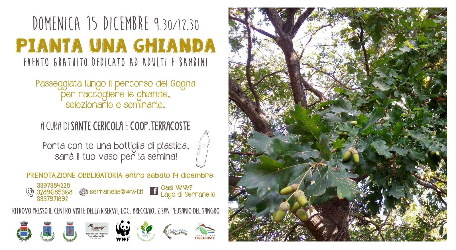 Locandina 15 dicembre